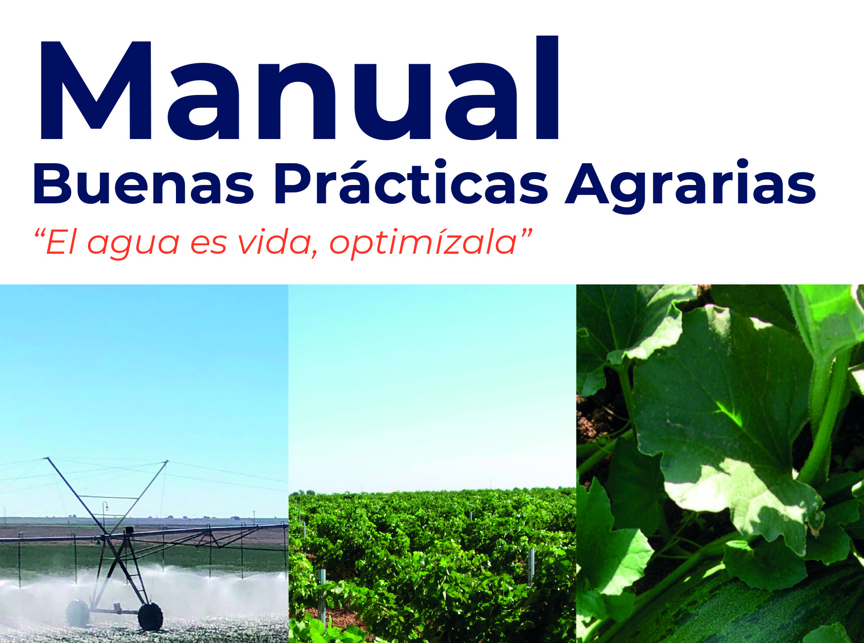 Manual Buenas Prácticas Agrarias